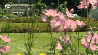 Andernach Germany  city images : Andernach residents create a community garden | People & Politics