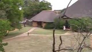 Mabula South Africa  city photo : South Africa-Johannesburg-Mabula Game Reserve & Game Lodge
