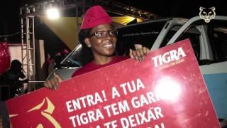 Tigra - 3º Aniversário da Festa das Redes Sociais