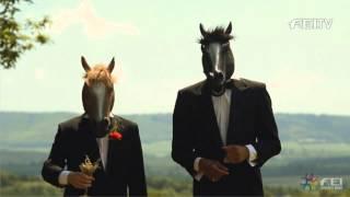 Horses in black tie discuss FEI Awards