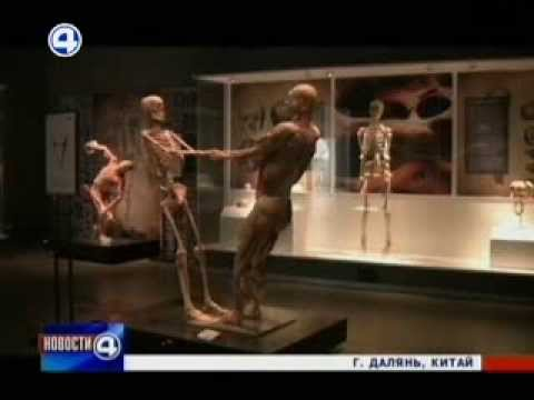 Музеи Даляня