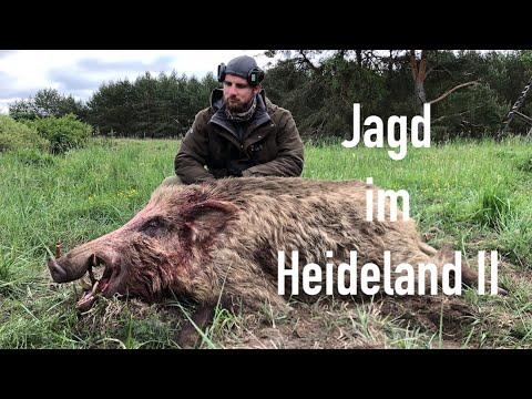 Jagd im Heideland II - HOD FreeEpisode