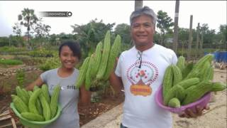 Video Satu Indonesia - Budi Soehardi, Mantan Pilot Berhati Mulia yang Mengabdikan Diri bagi Anak anak NTT MP3, 3GP, MP4, WEBM, AVI, FLV Januari 2018