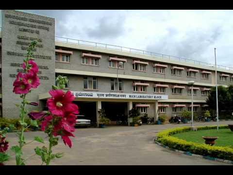 Capsicum Cultivation Radio Talk Hindi mpeg4