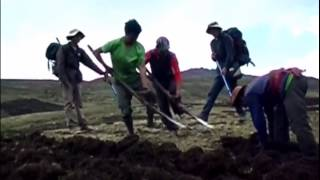 How to plough in las alturas