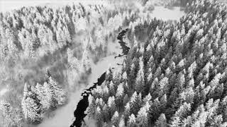 Video Krmelec - Z lesů, vod a bažin