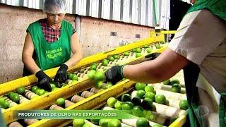 Agro Record na íntegra - 15/Dezembro/2019 - Bloco 1