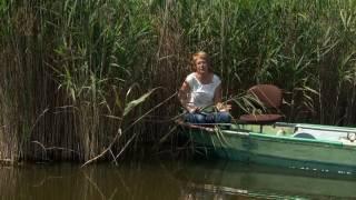 Vízinövények víztisztító szerepe - Kertbarátok - Kertészeti TV - műsor