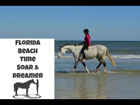 Dreams coming true - riding on the beach in Florida