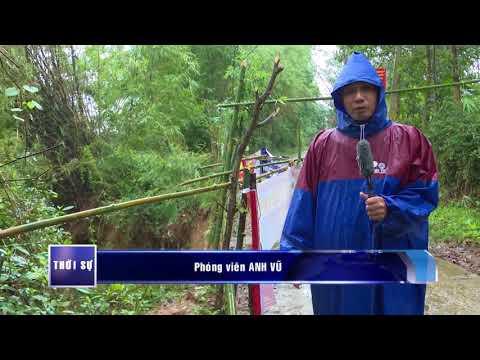 Sạt lở bờ sông Hiếu đe dọa cuộc sống người dân