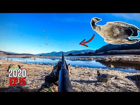 Sheet Water Goose Hunting & River Rainbows (2-Day Adventure)   2020 Hunting Season EP.15