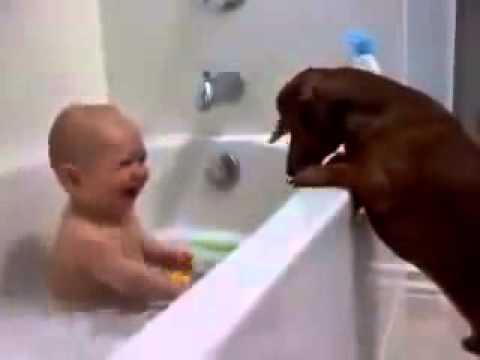 Baby verarscht hund !