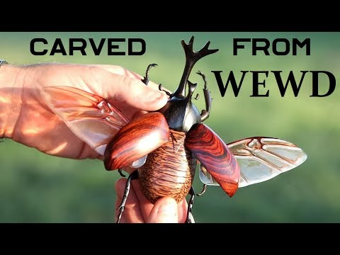 How-To Carve a Realistic beetle out of Wewd