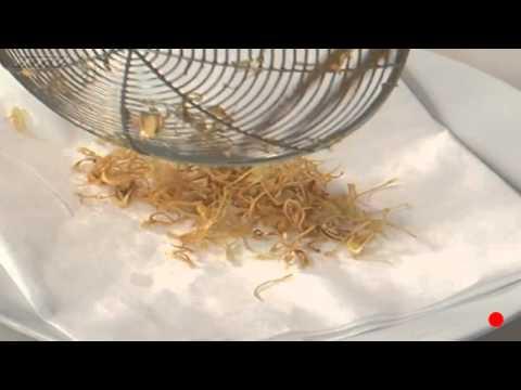 Thử tay nghề làm bếp với cách làm món lươn chiên mắm sả