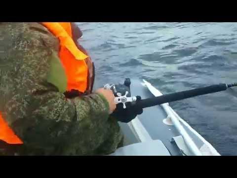 морская рыбалка в териберке