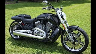 5. Vrod Muscle for sale VRSCF $9200 OBO Harley Davidson. They don't make them anymore!