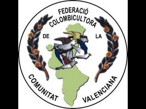 CAMPEONATO COMUNITAT VALENCIANA DE CASTALLA VIDEO DE LA 3 PRUEBA