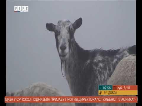 Katuni na planini Lebršnik