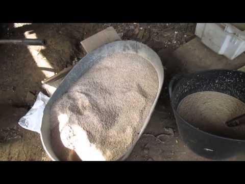 кормление карпа зерном видео