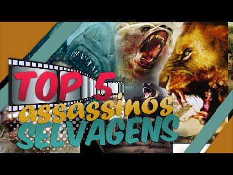 Dieta - TOP 5 FILMES DE ANIMAIS IMPIEDOSOS E FEROZES ????????????????????