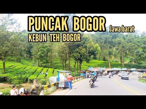Jalan Raya Puncak Bogor -  Dari Cipanas Sampai Gunung Mas