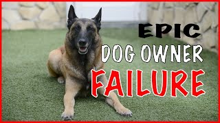 Dog Owner Failure with a Malinois - Working Dogs Should Not Be Owned by Everyone