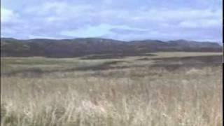 Alaska's Big Game - Alaska Bear Hunting With Gary Butch King - Part 1 Bear Attack