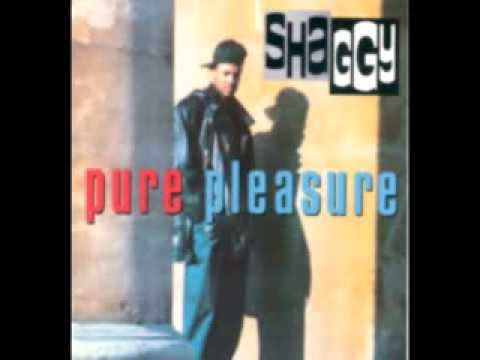 Tekst piosenki Shaggy - It Bun Me po polsku