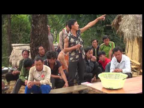 Mường Khong điểm nóng về chặt phá rừng ở Tuần Giáo