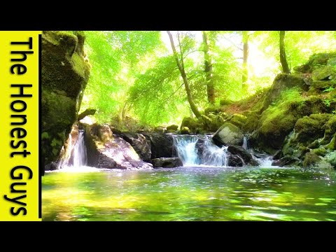 Video 4 HOURS Relaxing Music with Water Sounds Meditation download in MP3, 3GP, MP4, WEBM, AVI, FLV January 2017