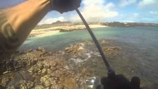 Spinning from shore in ascension Island with mommotti 190. Uncutted video to reralize how is really the fishing there...