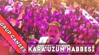 Kara üzüm habbesi - Video Selfie - Canses Düğün Organizasyon ve Grup Canses