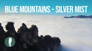 Blue Mountains, Silver Mist, 4K Timelapse