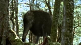 """Screenshot of """"Monsters We Met (Episode 3 of 3): The End of Eden"""""""
