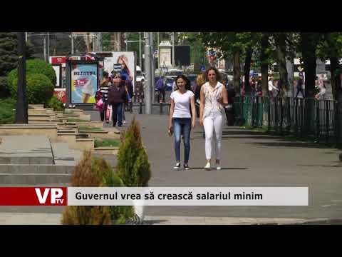 Guvernul vrea să crească salariul minim