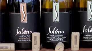 Spec's Wine, Spirits and Fine Foods - Challenges in Wine Retail