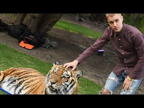 Justin Bieber Slammed by PETA