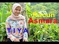 Download Lagu RACUN ASMARA  - TIYA # Dangdut  Cover Mp3 Free