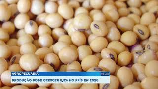 Produção agropecuária pode crescer 8,5% em 2020