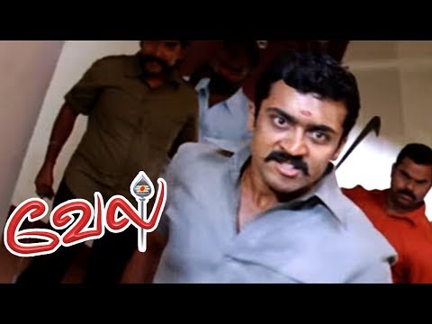 Video Vel full Movie | Vel Tamil Movie scenes | Suriya susepects his twin Brother | Suriya Best Mass Scene download in MP3, 3GP, MP4, WEBM, AVI, FLV January 2017