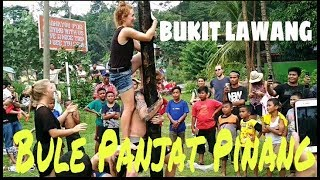 Download Video Ngakak! Bule Panjat Pinang 17 Agustus 2017 Di Bukit Lawang | Greasy Pole Climbing Contest MP3 3GP MP4