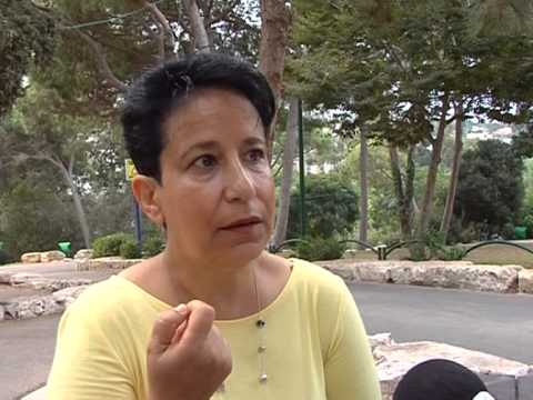 מצב עיקור וסירוס חתולי רחוב בעיר חיפה