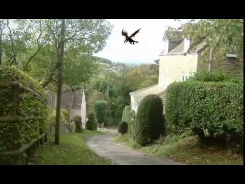 Dragon sighting over the UK'S BORDERS!!