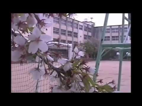 喜連東小学校とその周辺の様子 2015年 春