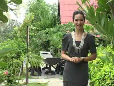 สารคดีโทรทัศน์ ชุด กรมอนามัยส่งเสริมให้คนไทยสุขภาพดี EP04 ล้างมือสำคัญอย่างไร