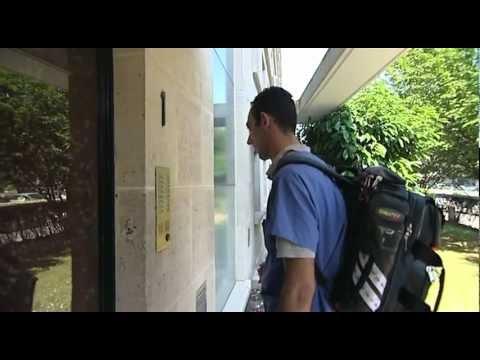 Reportage sur les vétérinaires à domicile en île de France : VetAdom