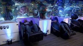 You Could Be Sleeping With The Fishes In This Nap Room Aquarium! by Animal Planet