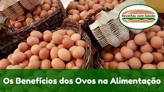 Os Benefícios dos Ovos na Alimentação