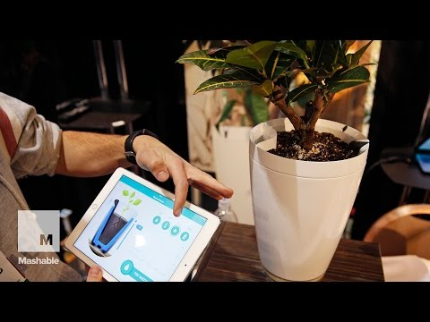 The newest gadgets from CES 2015 that could soon be in your home | Mashable