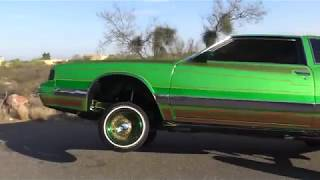 tucson lowrider car show hosted by H,G,P & IMAGINATION C C